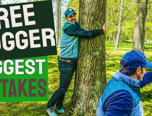 SAVE SHOTS INSTANTLY From The Trees – TOP 5 Tree Mistakes for Golfers – Tree Golf Tips
